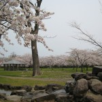 菊ケ丘水郷公園