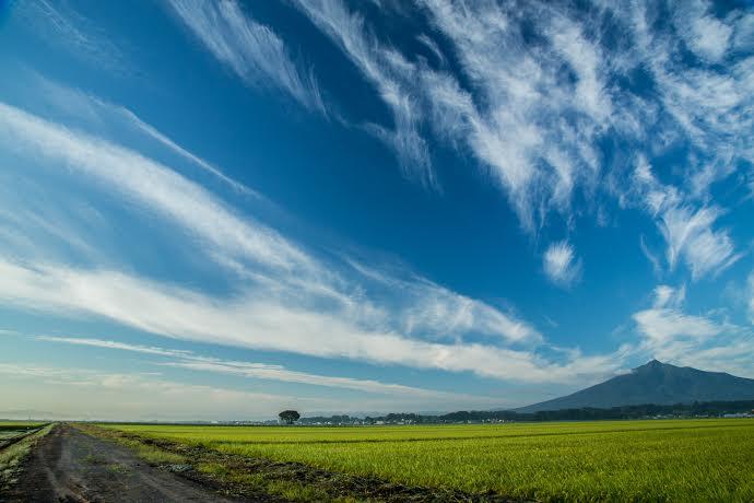 ⑫山谷将一「流線の岩木」(景色)