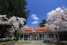 ⑬木村崇「駅舎の春」(景色)