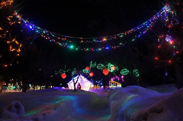 2015.0203雪と光のページェント (3)