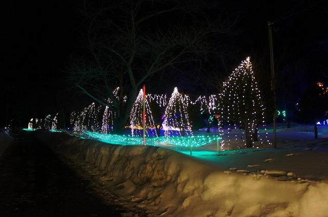 2015.0203雪と光のページェント (1)