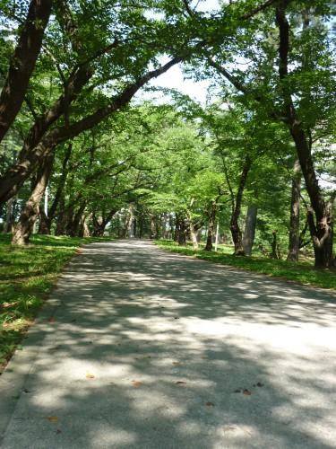 芦野公園 (3)
